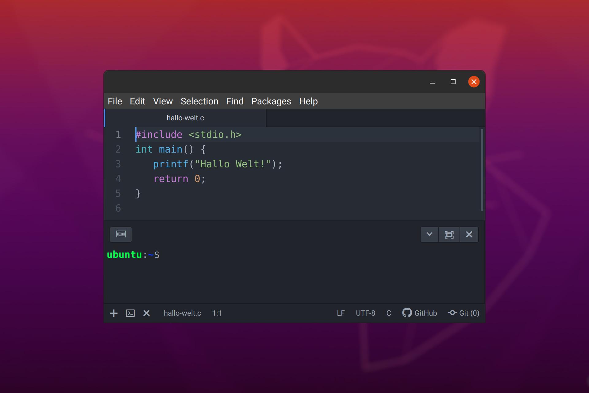 screenshot von atom mit terminal